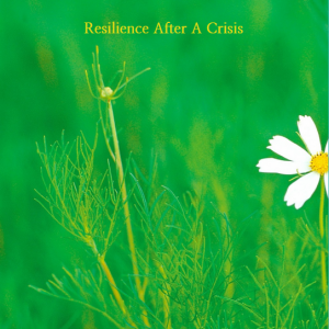 The Importance of Resilience After A Crisis eBook