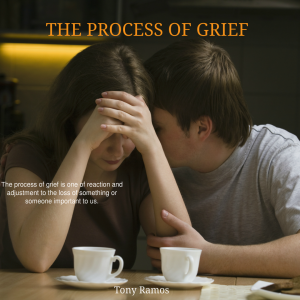 The Process of Grief eBook