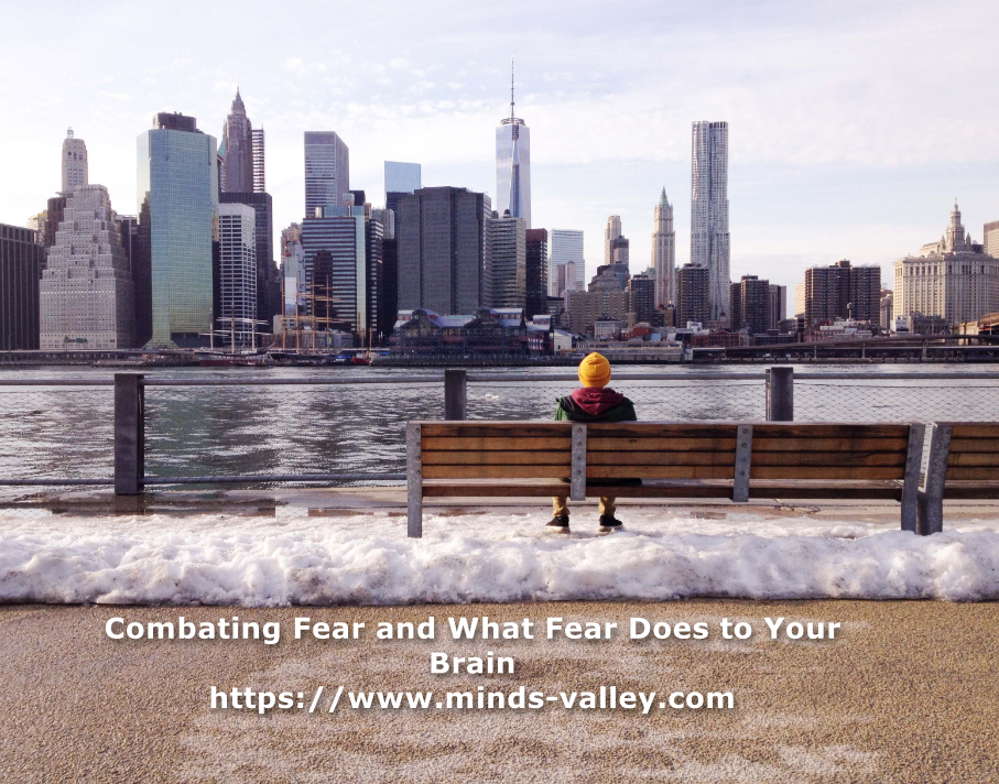 audio book Combating Fear and What Fear Does to Your Brain